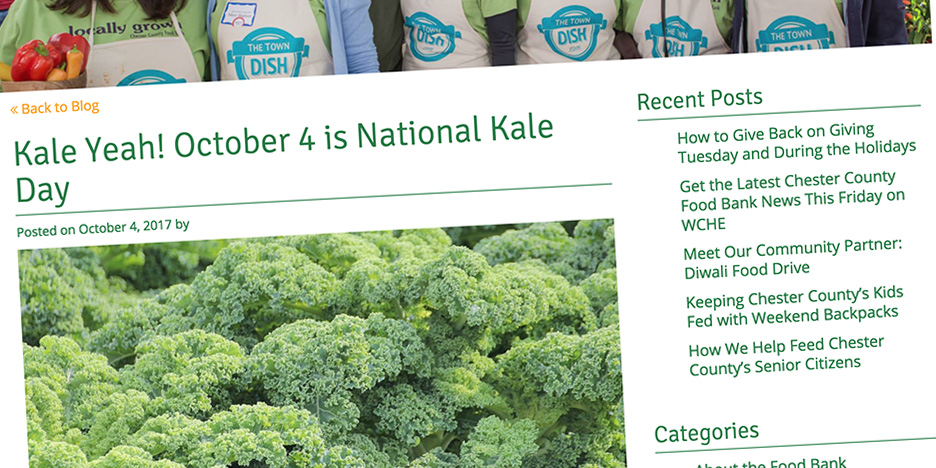 Chesco-Food-Bank--National-Kale-Day-HERO