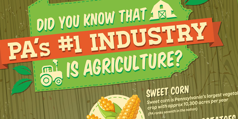 PA-Veggies-Agriculture-Stats-Thumbnail