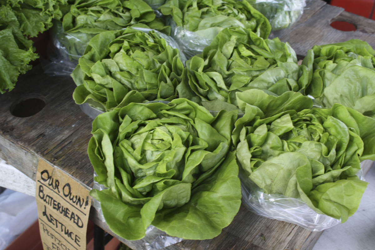 farm market lettuce